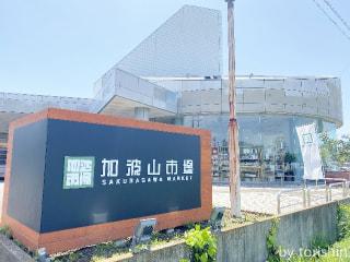 桜川市にオープンした産直店「加波山市場」に行ってきました
